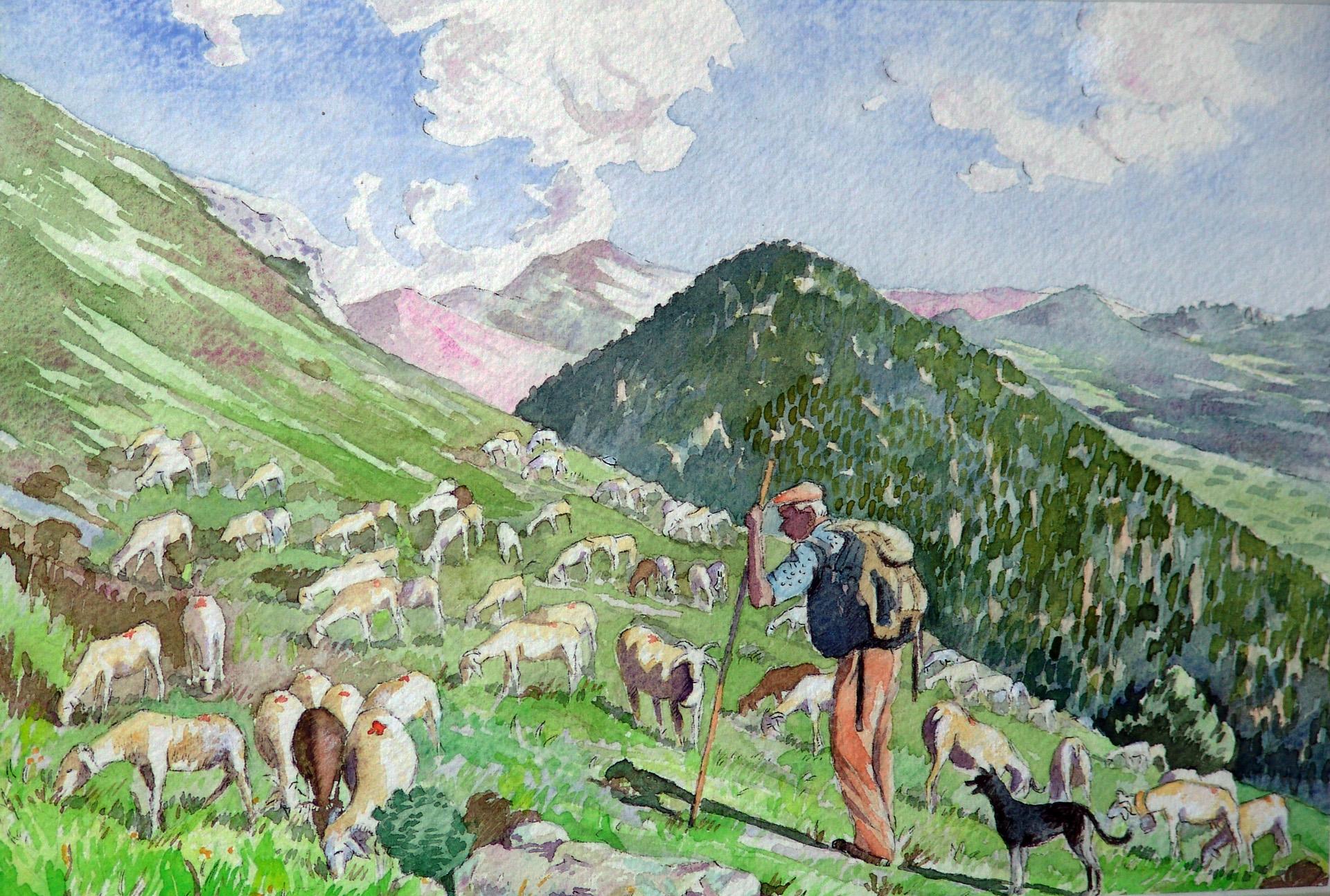 Paturage dans les Pyrenees
