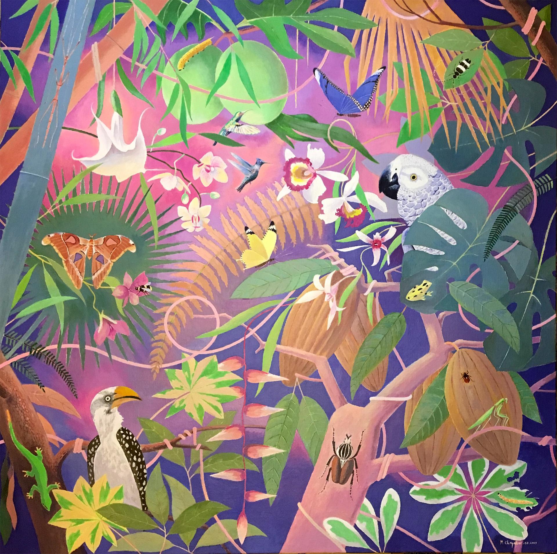 Foisonnement et entrelacs en forêt tropicale
